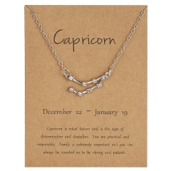12 Constellations Silver Crystal Zodiac Sign Pendant Necklace Women Card Jewelry Capricorn