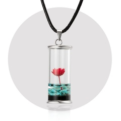 Dried Daisy Glass Floating Lockets Pendant Necklace Dried Flower Snow Mountain Wood Drifting Bottle Necklace Wish Bottle Jewelry red