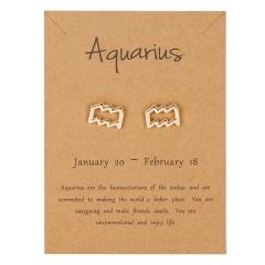 Symbol version of twelve zodiac paper card earrings Aquarius
