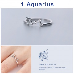 12 Constellation Silver Opening Adjustable Diamond Rings Aquarius