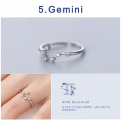 12 Constellation Silver Opening Adjustable Diamond Rings Gemini