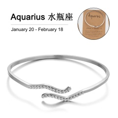 12 Constellation Silver Rhinestone Open Bracelet Bangle Wholesale Aquarius